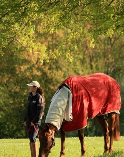 Red Kel jersey 2015-Mary Patricia Stone